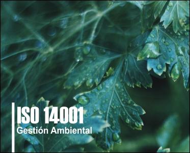 14001B